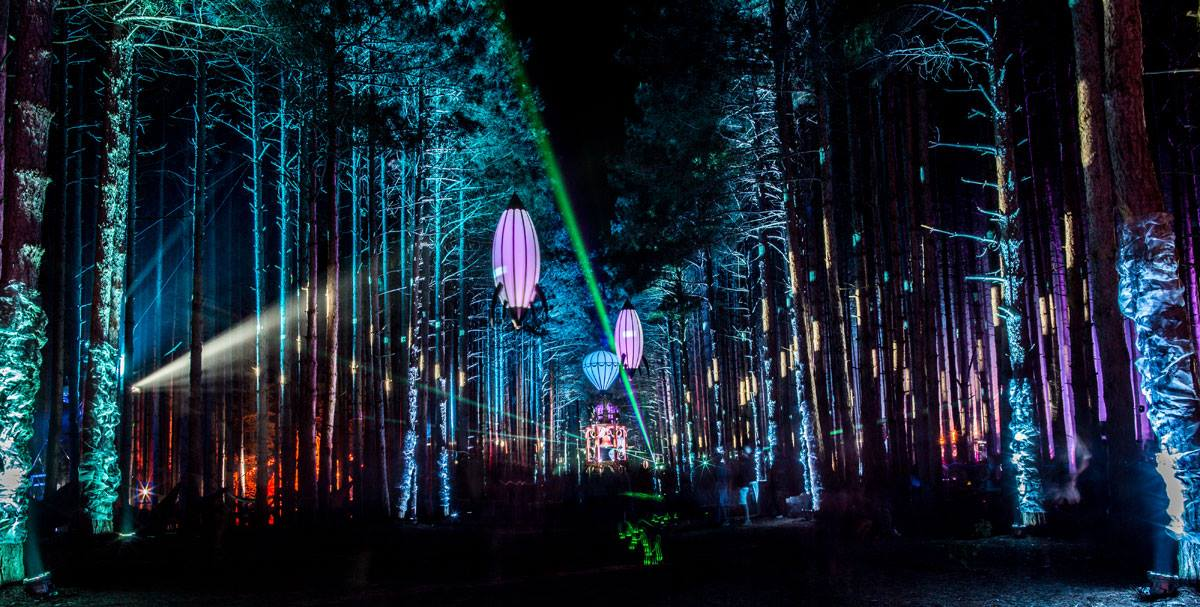 3 - Electric forest